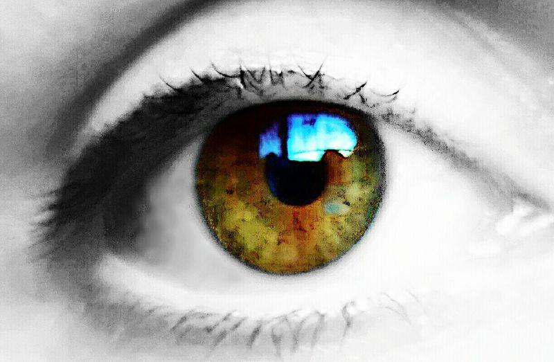 Hazel eye Eye Colour Selective Nostalgia Spirit Hazel Eye ❤ Me Hello World EyeEm Gallery Close-up Creativity