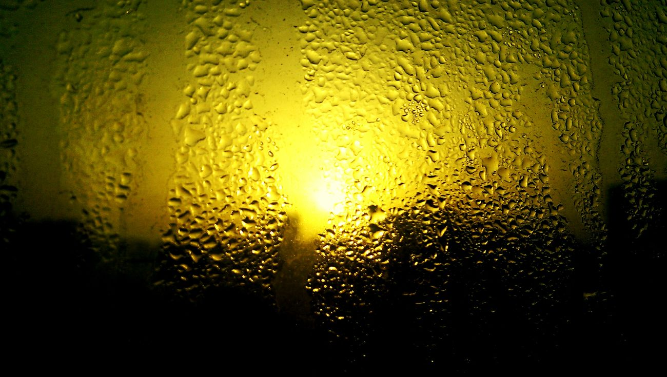 Fog Earlymorningclick The Yellow Droplets First Eyeem Photo