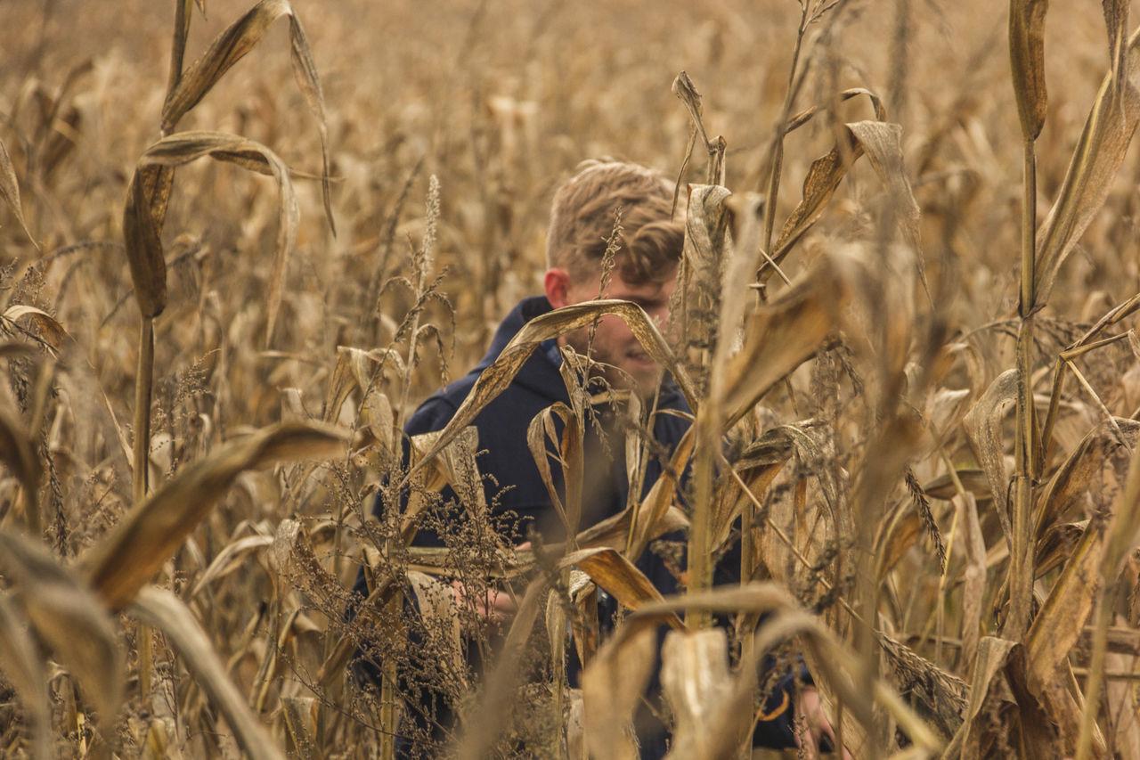 Man Walking Amidst Crops Growing On Field