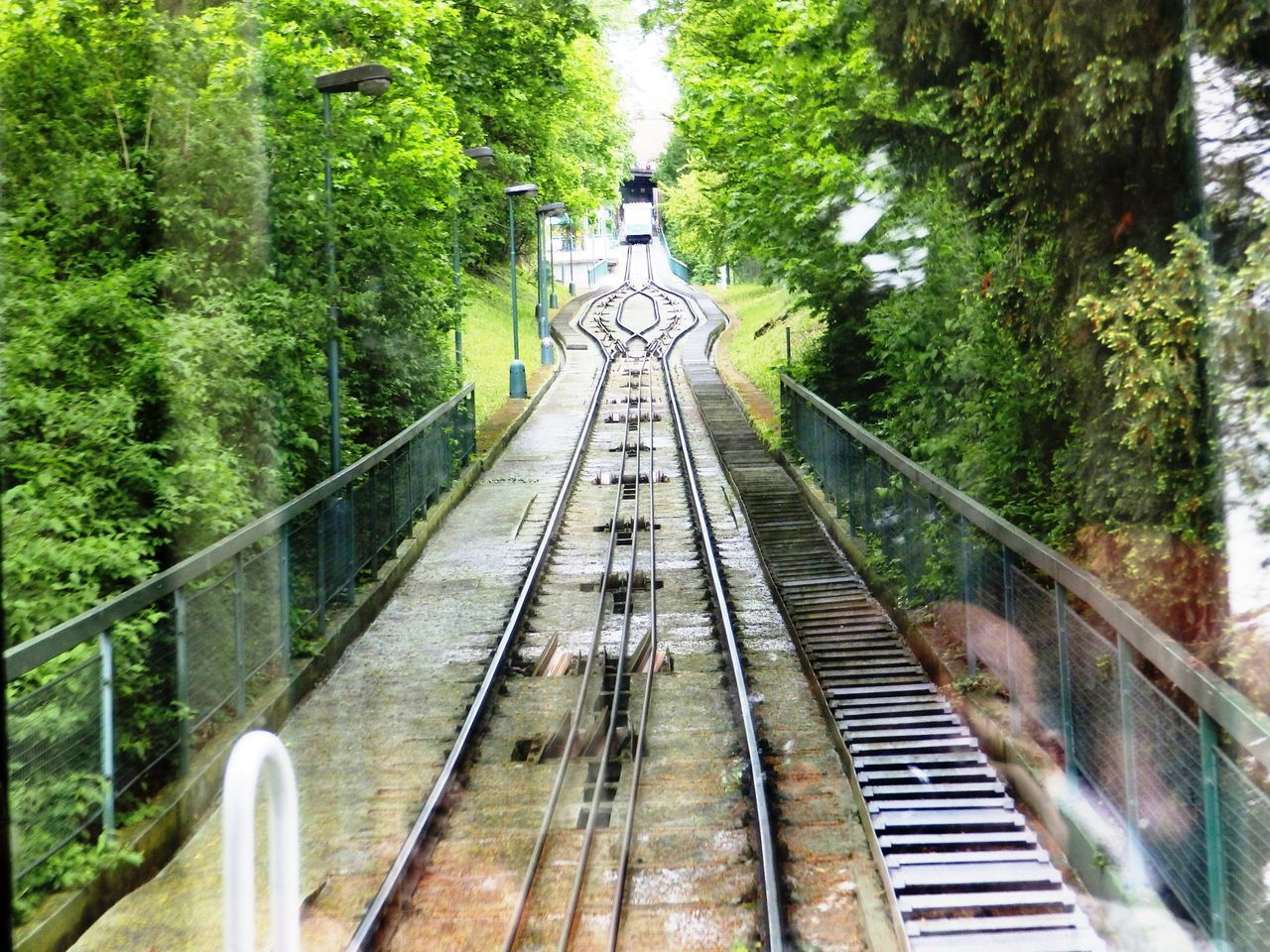 Old Town, Prague Bridge - Man Made Structure Built Structure Cable Car Tracks Connection Day Diminishing Perspective Footbridge Forest Green Color Growth Long Lush Foliage Narrow Nature No People Old Town Outdoors Plant Prag Prague Railing The Way Forward Tranquility Tree Vanishing Point