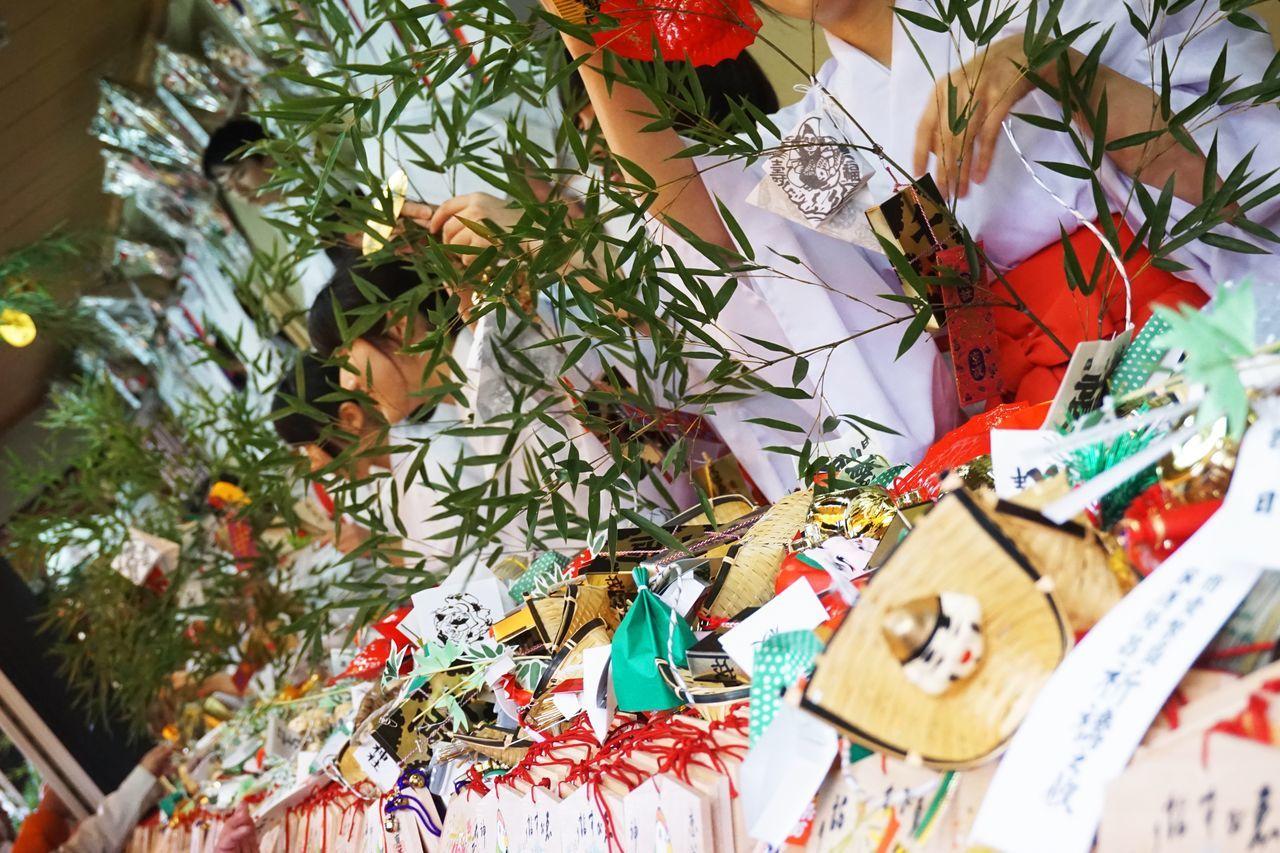 2017 Banboo Ebisushrine Japan Kyoto Ornaments Religion Shrine Shrine Maiden えびす神社 ゑびす神社 京都 十日えびす大祭 巫女 福笹