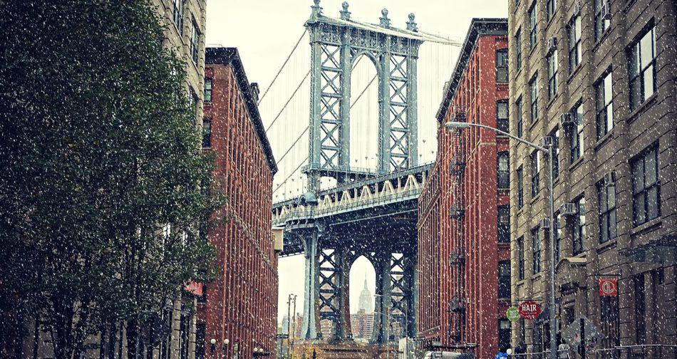Beautiful stock photos of schneeflocken, Architecture, Bridge - Man Made Structure, Brooklyn, Building