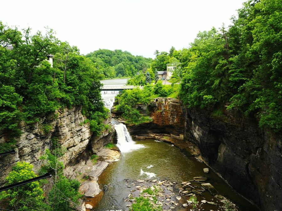 Cornell University Ithaca New York Upstate Gorges Waterfall Trees Summer