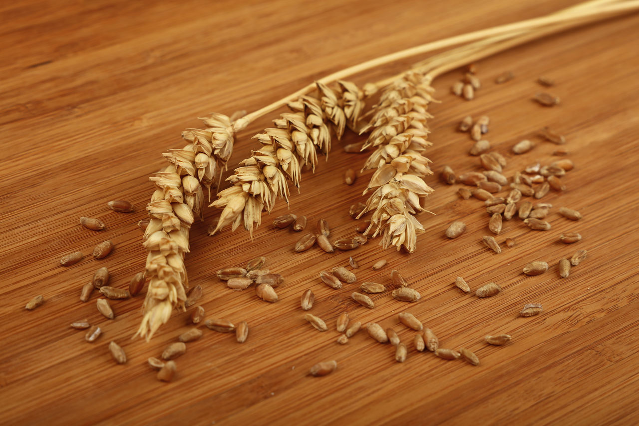 Wheat ear spikes with grains on wooden board Natural Wheat Bread Cereal Plant Close-up Food Grain Group Of Objects Healthy Eating High Angle View Ingredient Medium Group Of Objects No People Table Three Wheat Ears Wheat Spikes Wood - Material Wood Grain