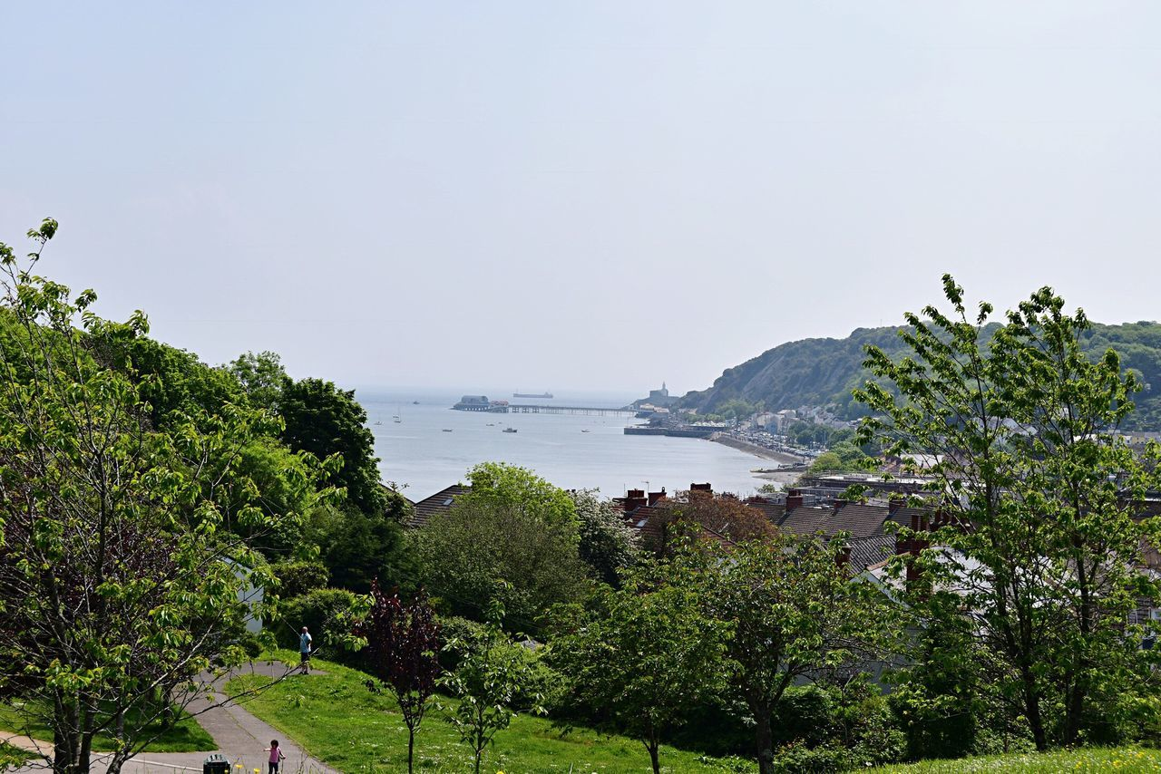Feel The Journey Trees Greenery Seaview Sunny Day Coastline Nikon D5500