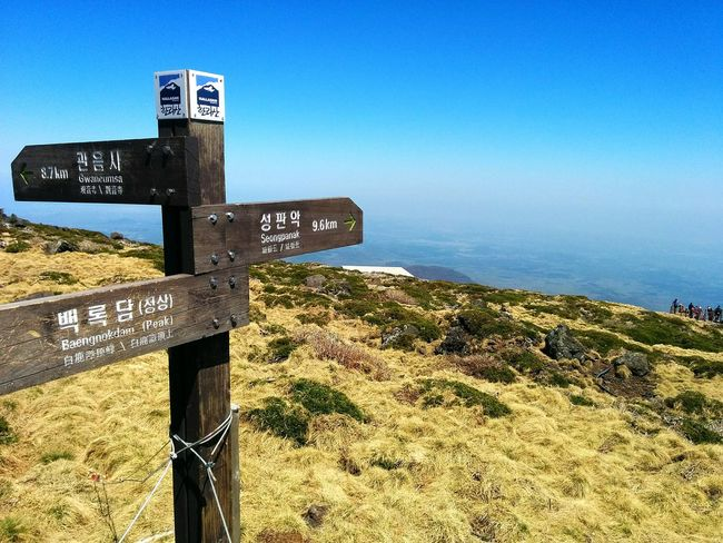 Jeju Jejudo JEJU ISLAND  South Korea Korea Nature Spring Hiking Summit Mountain Mount Hallasan Hallasan 한라산  Travel Photography Travel 대한민국