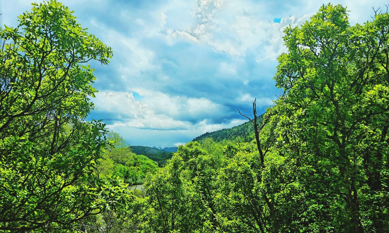 Mountains Green Mountains Mountain View Mountain_collection Mountains And Sky Mountainview Green Leaves Green And Sky Mountainlove Things That Are Green