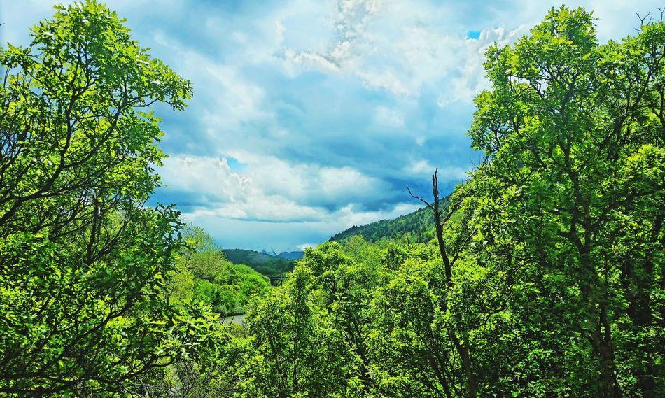 Mountains Green Mountains Mountain View Mountain_collection Mountains And Sky Mountainview Green Leaves Green And Sky Mountainlove Things That Are Green