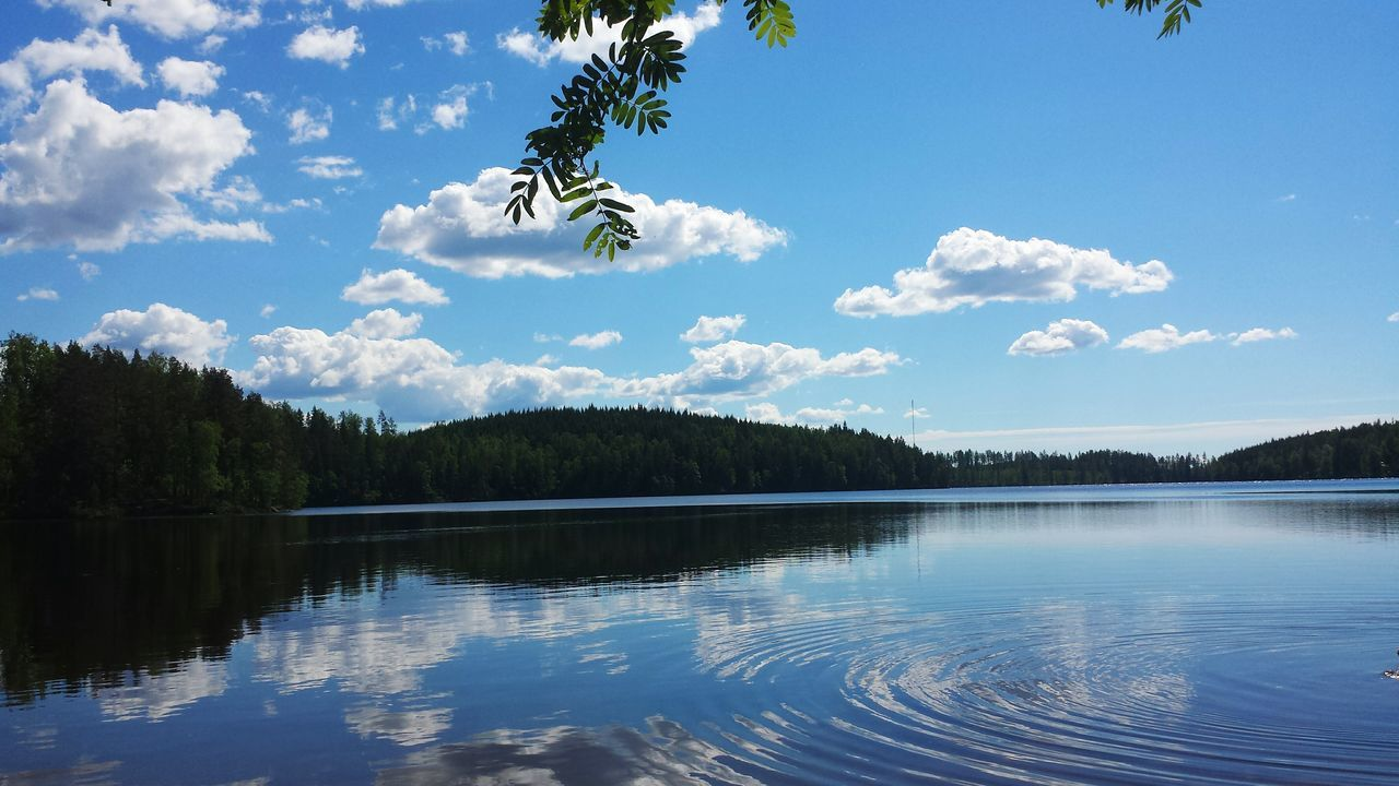 nature, tree, tranquility, water, tranquil scene, reflection, lake, outdoors, beauty in nature, scenics, sky, no people, day, forest