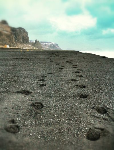 Black Sand Beach Footprints EyeEm Best Shots Beachphotography Footprints In The Sand Eye4photography  View Iceland_collection Iceland Finding New Frontiers