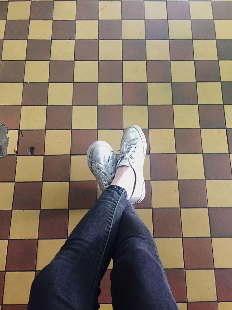 Silver Shoes Flortraits Pattern