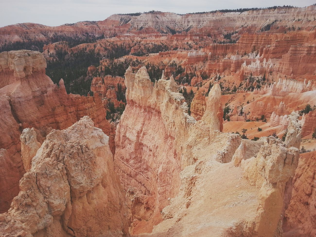 Like walking on another planet. RoadTripxUSA Bryce Canyon Utah
