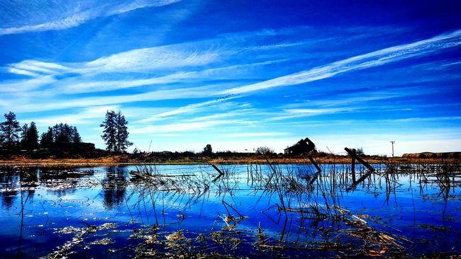 Rolling through the open wide PNW Reflections Washington Wander The Week On EyeEm
