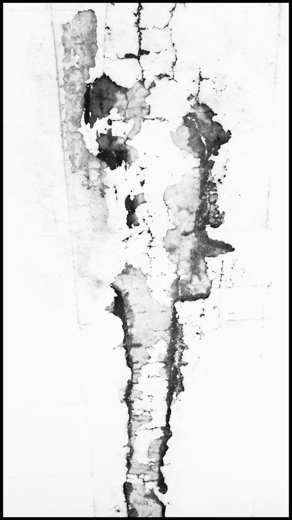 Abstract Ink Paint Wall Blackandwhite Black & White