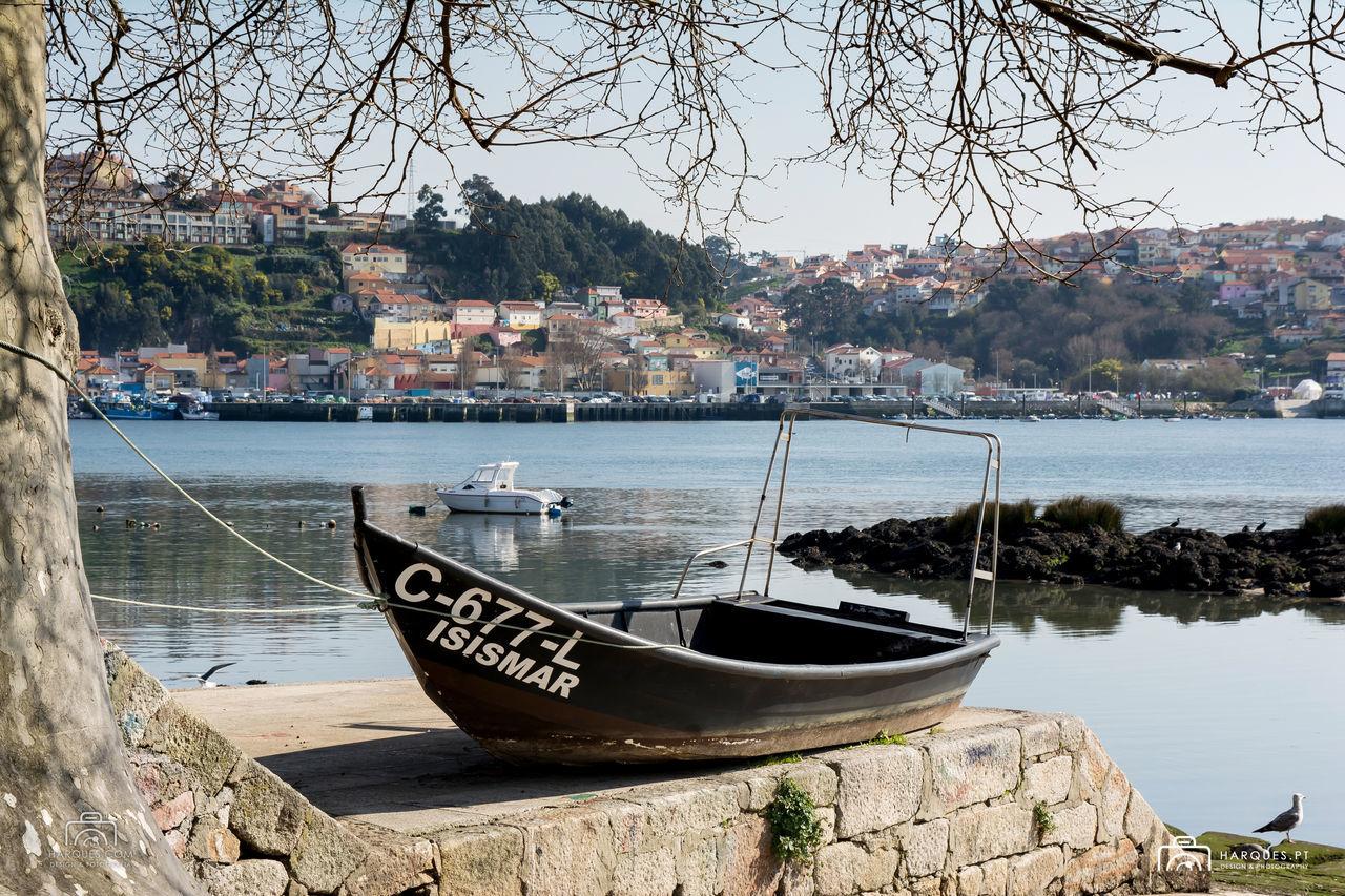 City Douro  Porto Portugal River Seagulls Transportation Tree Wine First Eyeem Photo
