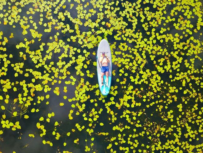 Morning office Front View One Person Green Color People One Young Woman Only Young Adult Adult One Woman Only Floating On Water Leaf Young Women Only Women Multi Colored Adults Only Women Day Outdoors Nature
