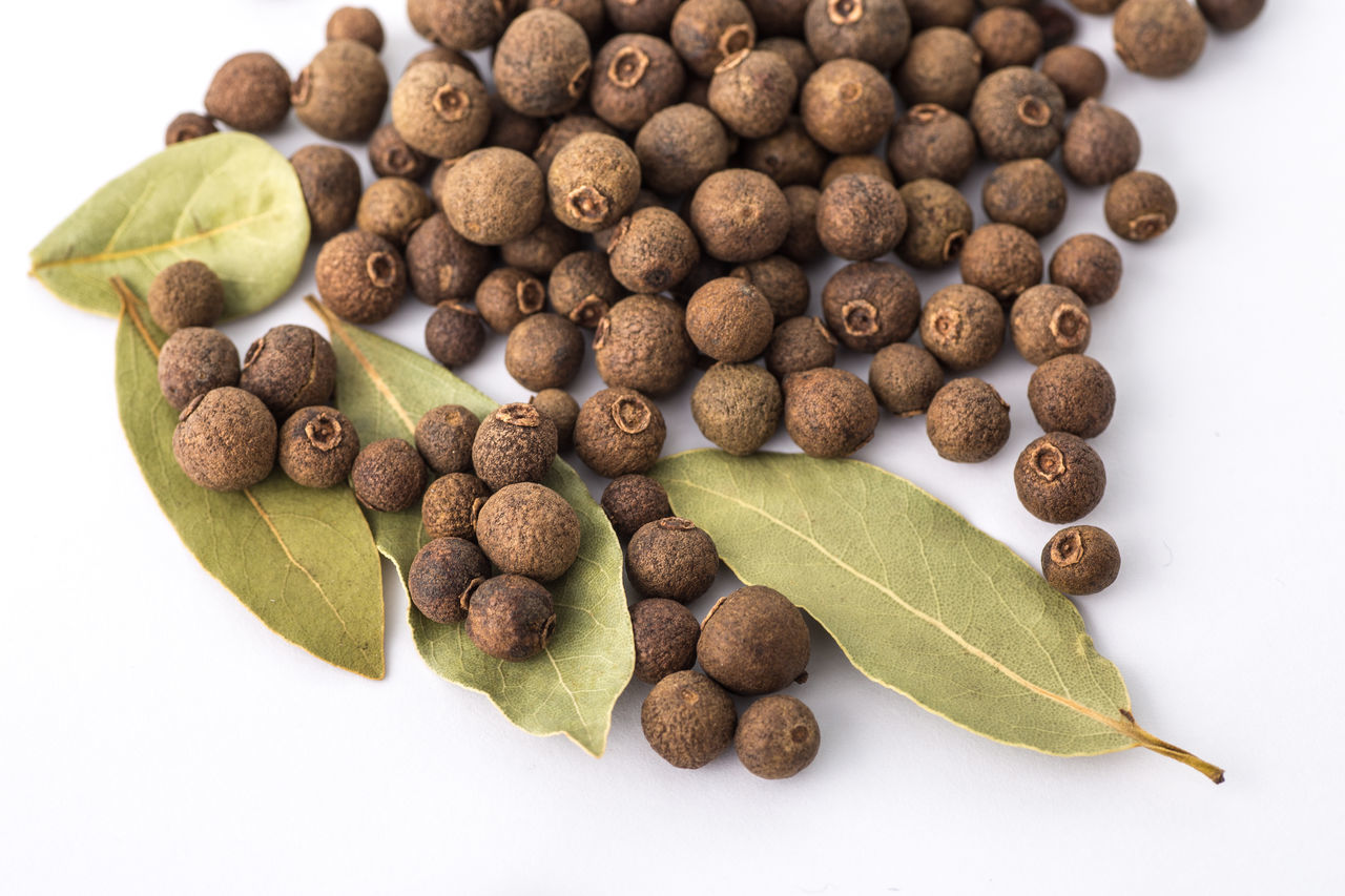 Allspice and bay laurel on a white background Allspice Aromatic Bay Laurel Bay Leaf Bay Leaves Berries Brown Berries Close-up Cooking Cooking At Home Culinary Food Food And Drink Freshness Healthy Eating Ingredients Ingredients In The Kitchen Jamaica Pepper No People Pimenta Pimento Plant Spice Studio Shot White Background