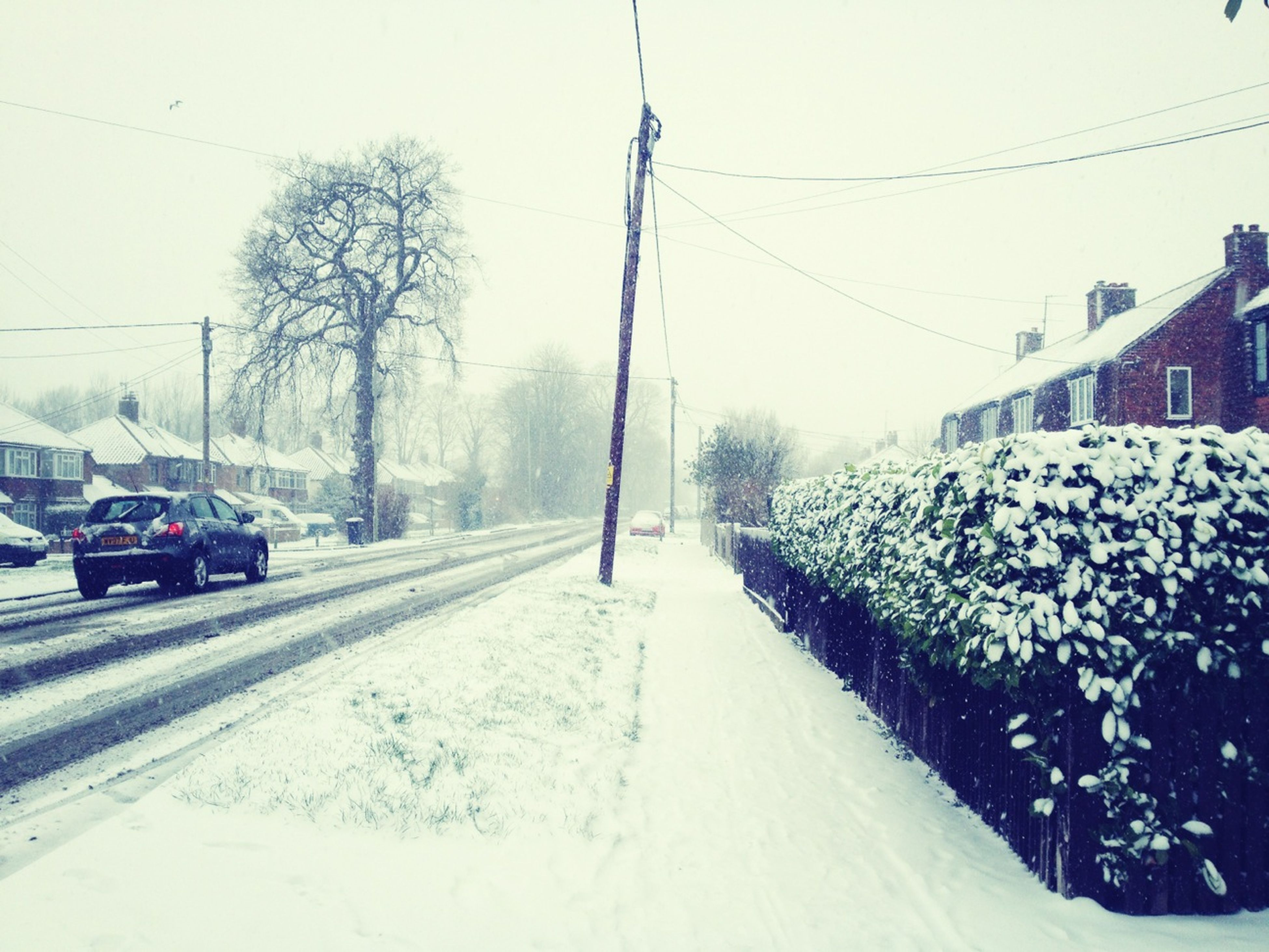 snow, transportation, winter, cold temperature, the way forward, season, road, weather, tree, land vehicle, covering, mode of transport, car, diminishing perspective, street, power line, clear sky, electricity pylon, vanishing point, nature