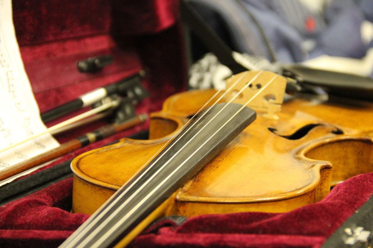 Close-up Detail Focus On Foreground Instrument Music Music Instrument Still Life Stradivari
