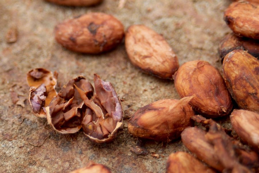 Cacao Beans Chocolate Ready Brown Close-up Day Fermentation Food Freshness Healthy Eating No People Split Up