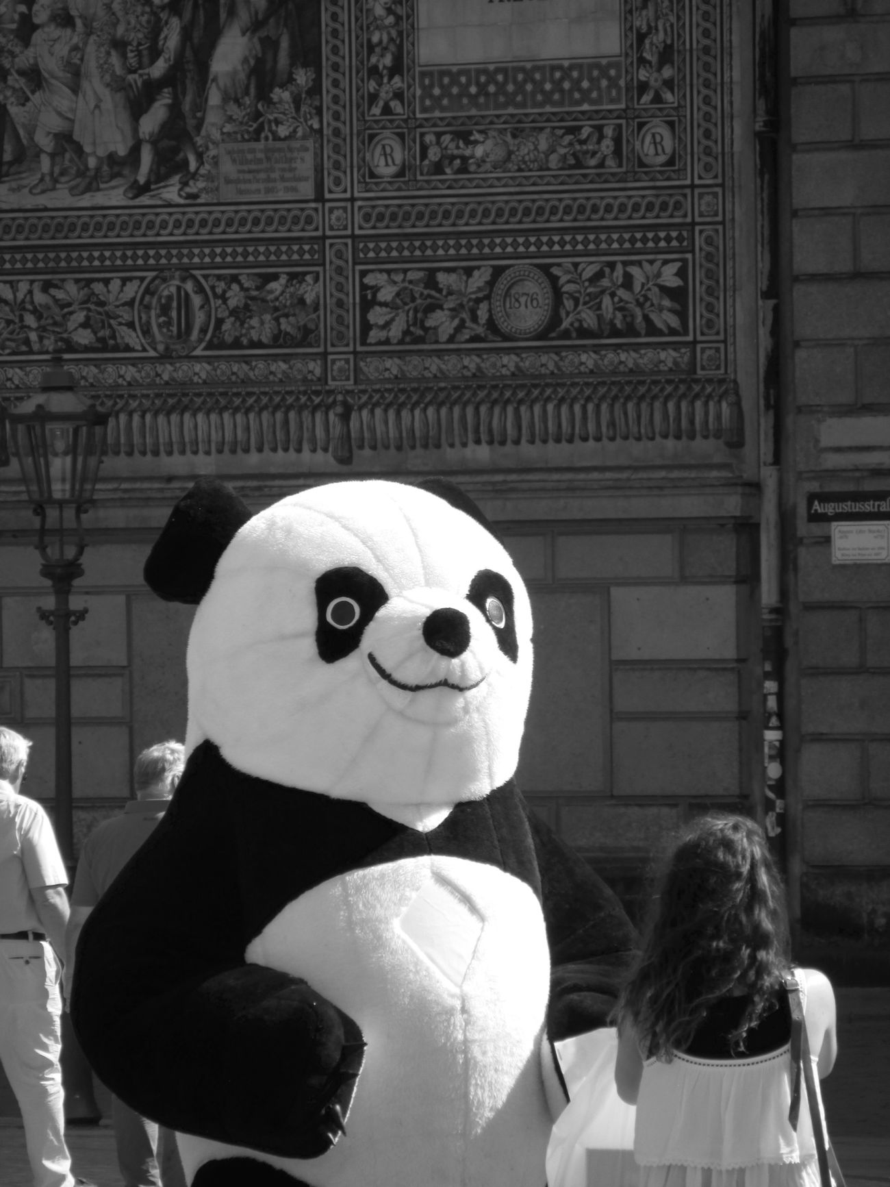 Taking Photos Hello World Streetphotography Dresden EEA3 - Dresden The Street Photographer - 2015 EyeEm Awards EEA3 Getting Inspired Canon Panda