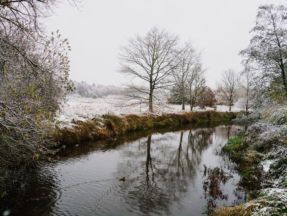 Beauty In Nature Cold Day Day First Day Of Winter Nature No People Outdoors Reflection Scenics Sky Snow ❄ Tree Water Winter Winter Trees Wümme Wümmewiesen Water Reflections Lumix G5 Rotenburg An Der Wümme Wümmewiesen