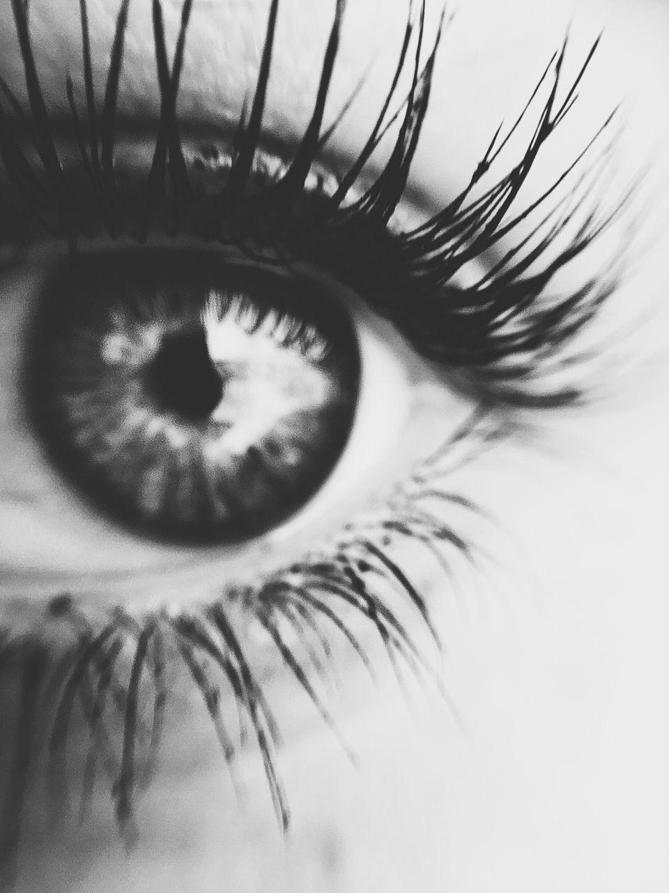 eyelash, human eye, human body part, sensory perception, one person, macro, close-up, eyesight, real people, eyeball, outdoors, iris - eye, day, people