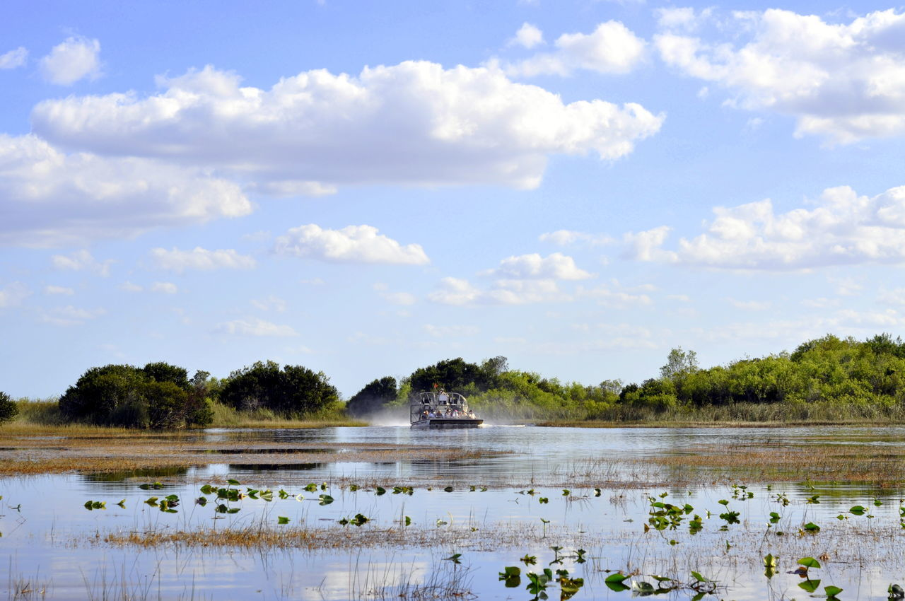 Airboat Cloud - Sky Everglades  Miami Nature Outdoors Reflection Sky Water