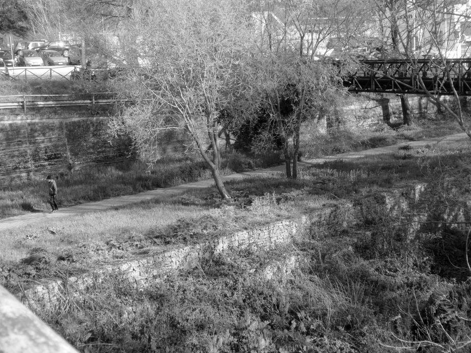 #basilicata #fbianco&nero #fotobianconero #Italia #OldPicture #potenza #urbanphotography #vialedelbasento