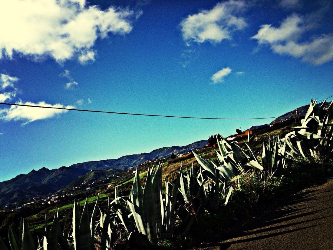 Hiworld Hello World Iphonephotography Canary Islands
