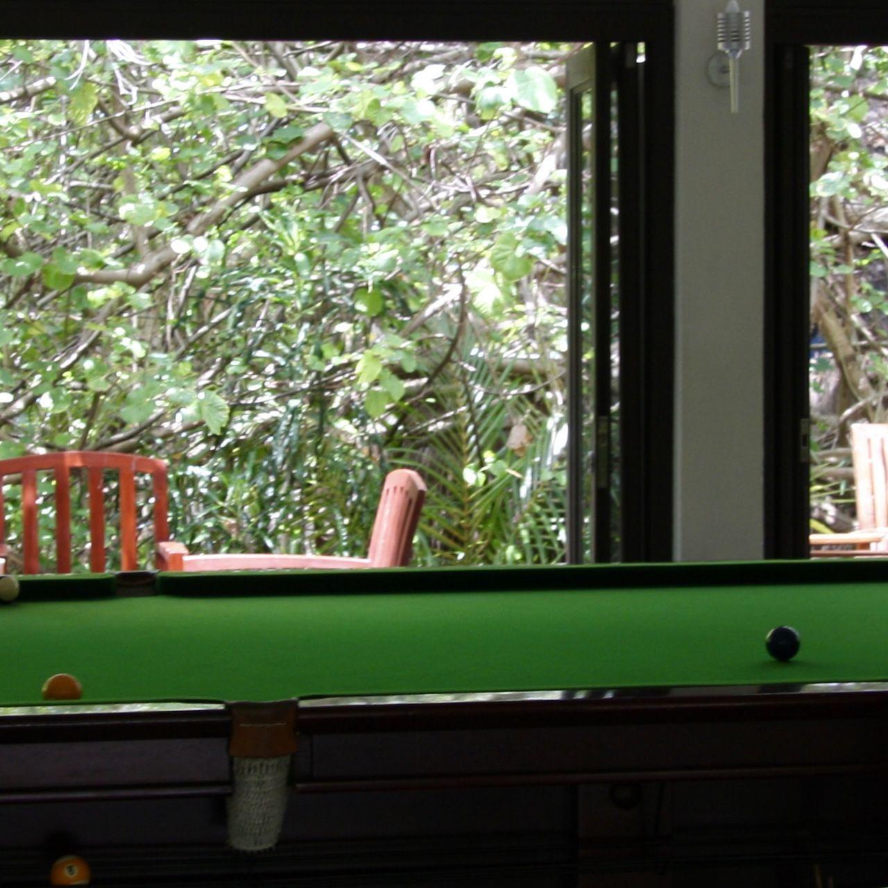 playing billiards Balcony Ball Billiards Colors Day Design Fun Garden Greenery Hobby Holiday Interior Light Light And Shadow Nature No People Pool Billard Snooker Summer Tree Tropical Window Wooden