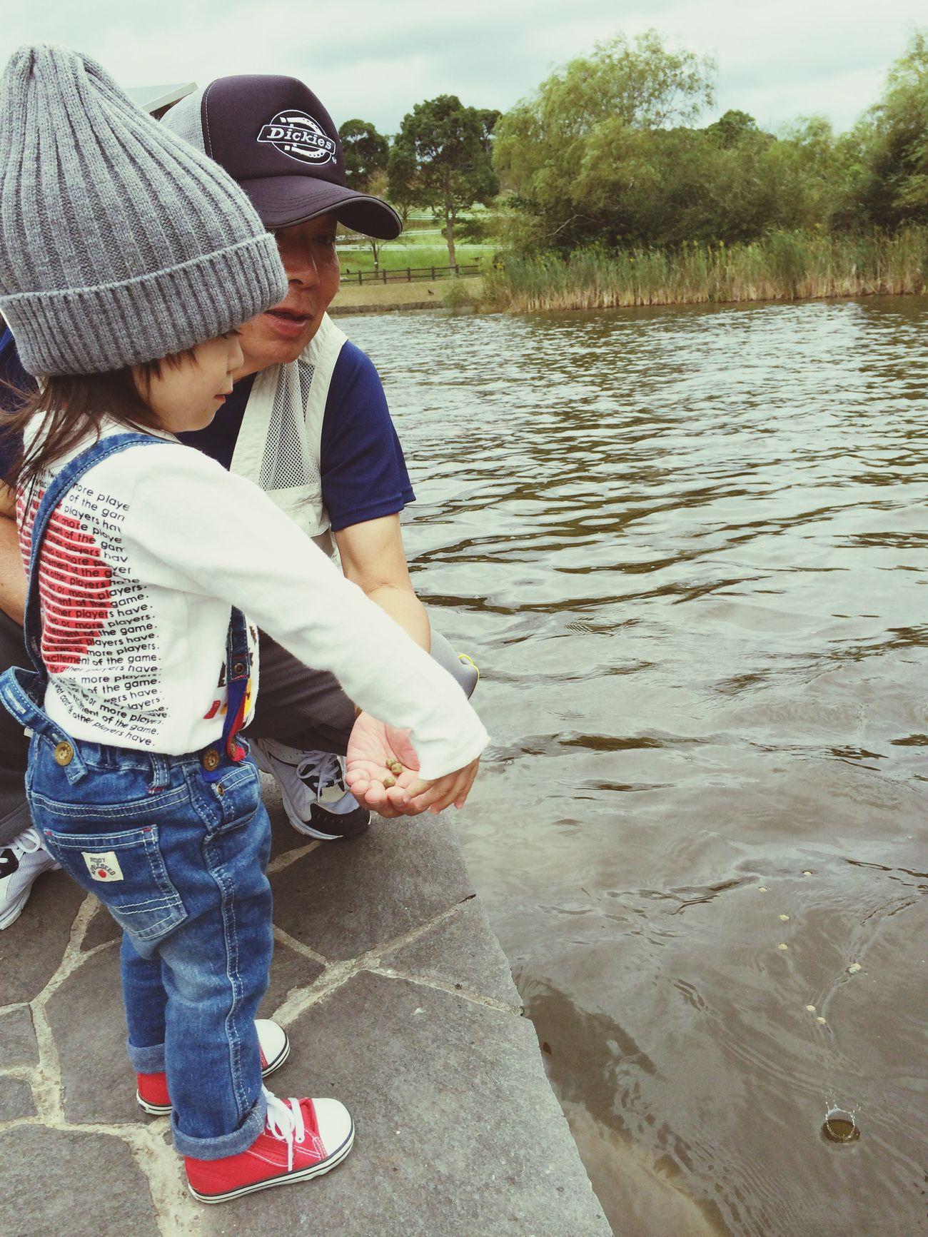 寒いのに 鯉の餌やり。