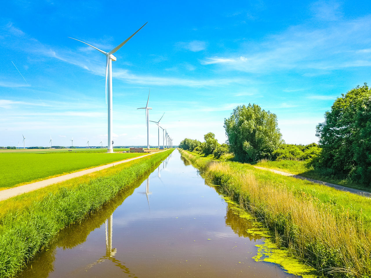 alternative energy, environmental conservation, wind power, wind turbine, renewable energy, fuel and power generation, windmill, industrial windmill, field, nature, rural scene, sky, no people, grass, day, beauty in nature, tranquil scene, green color, outdoors, tranquility, water, landscape, scenics, traditional windmill, growth, tree