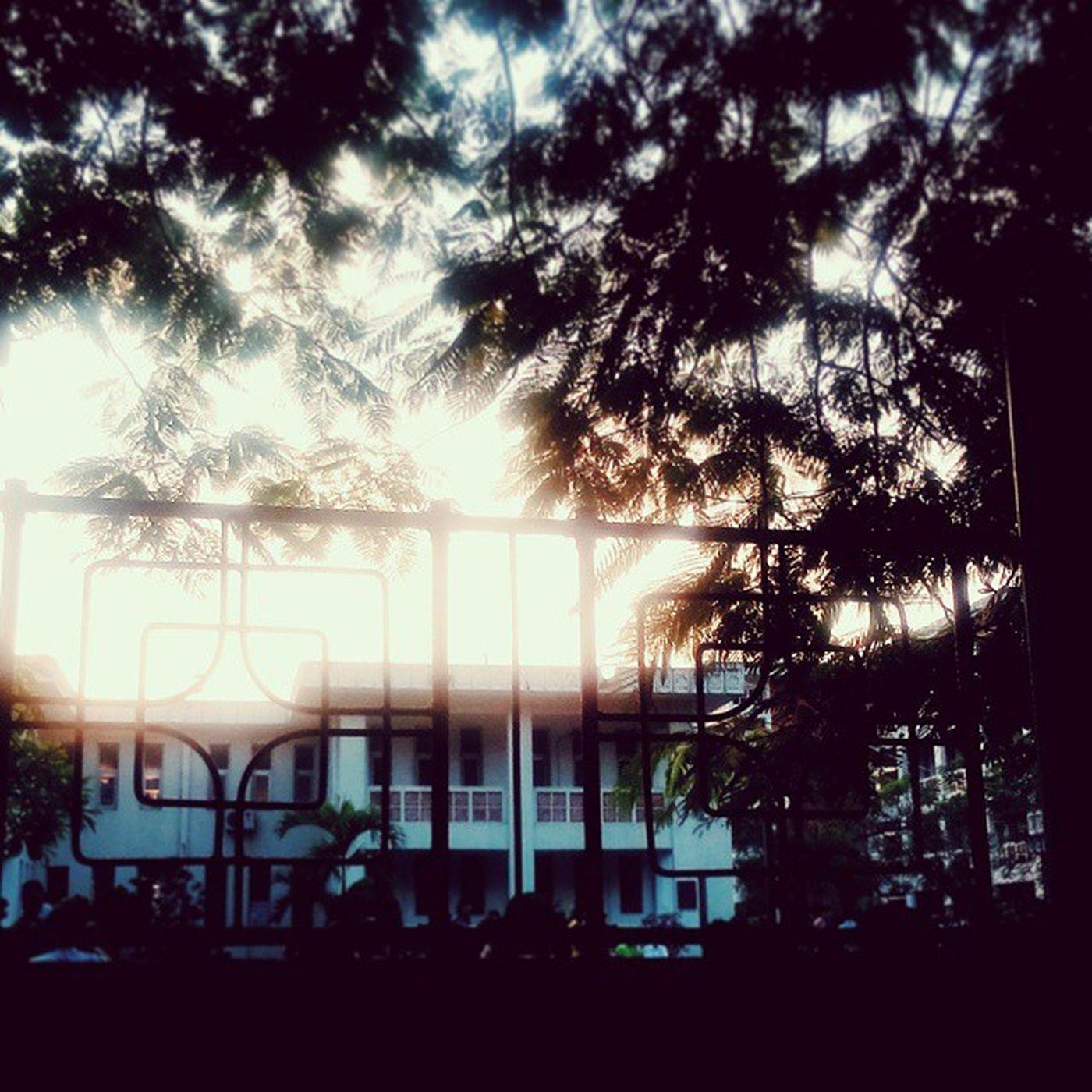 Quand le soleil se couche. L'autumne va presque venir. Crépuscule Autumne