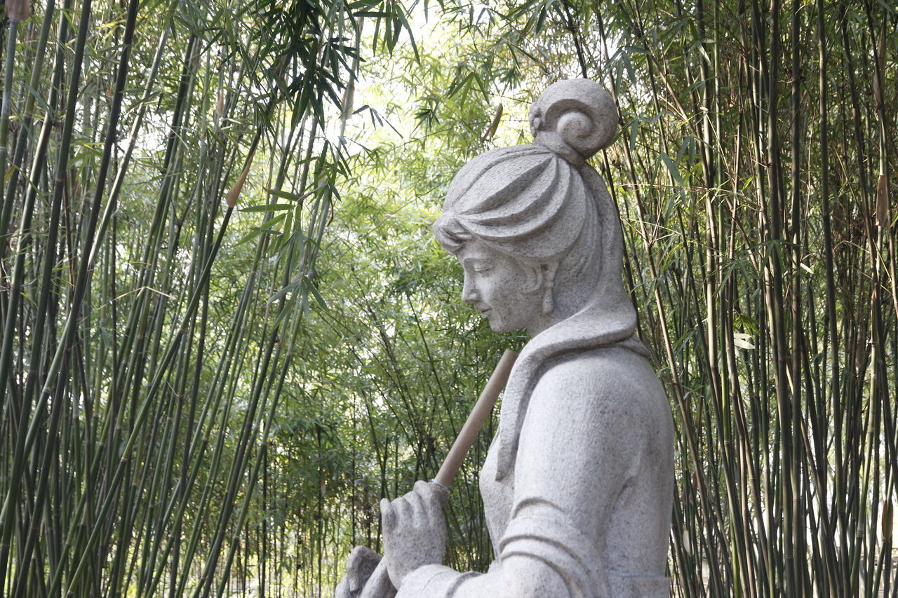 statue, human representation, sculpture, tree, day, outdoors, low angle view, nature, growth, no people, beauty in nature