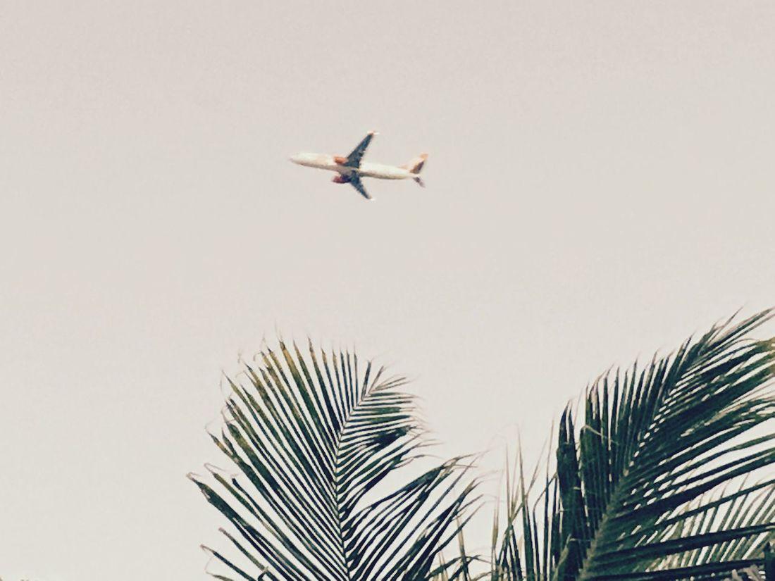 The Journey Is The Destination Plane