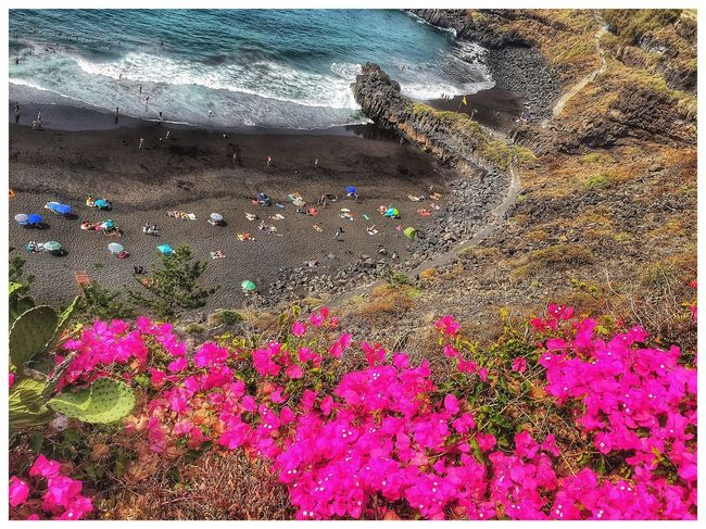 A Bird's Eye View Beach Cliff