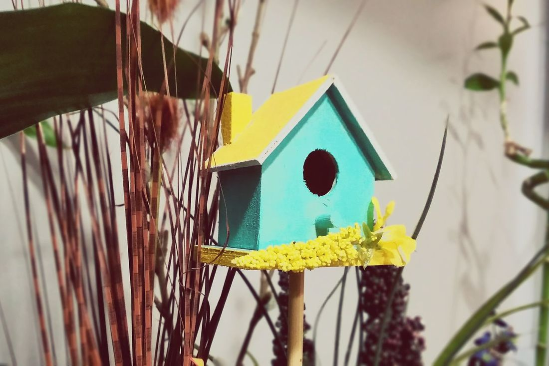 Wooden House Wood Art Birdhouse Indoor Nature