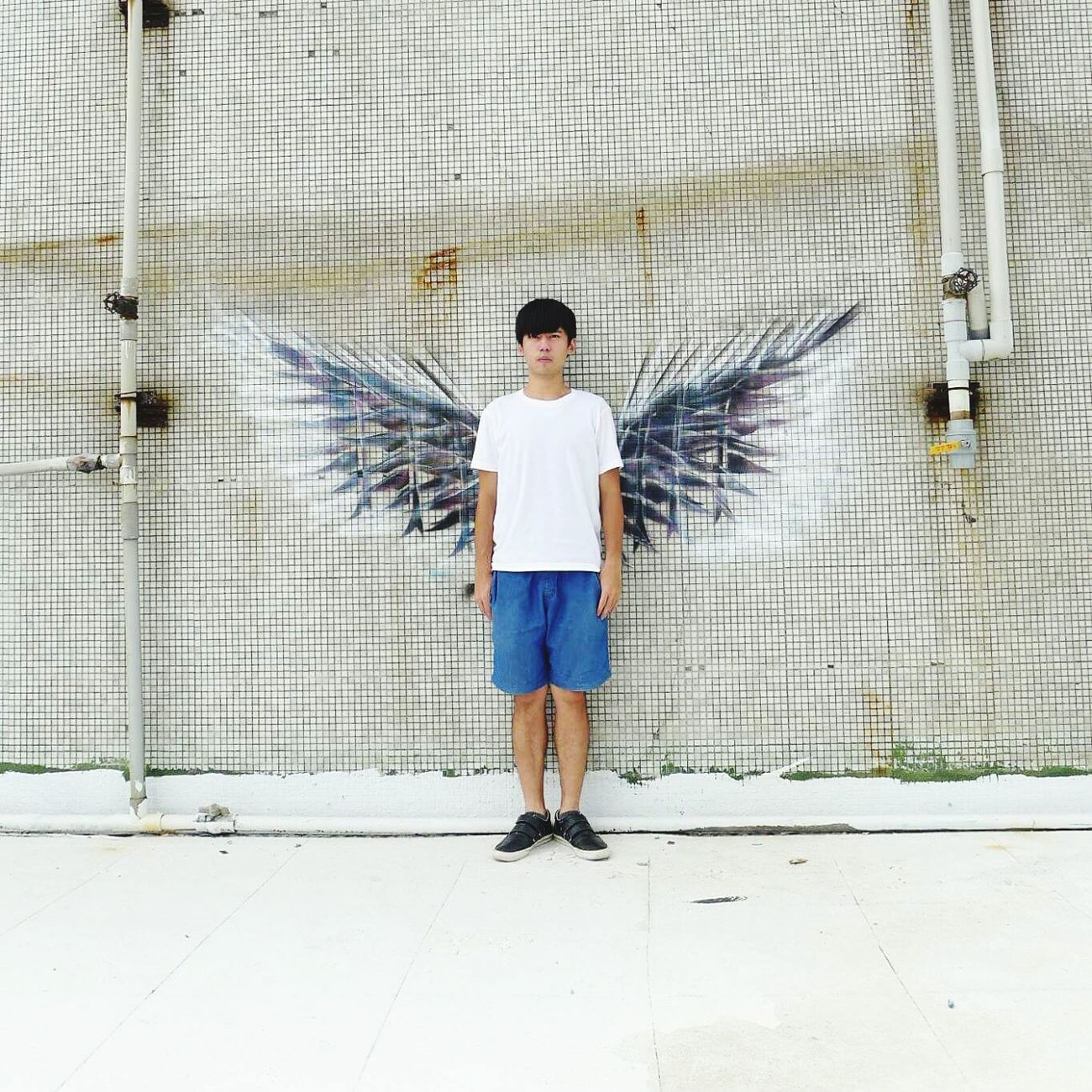 我想要一對翅膀 I Would like be a wings to take as Tatoo Wingman Wings Hello World Taking Photos