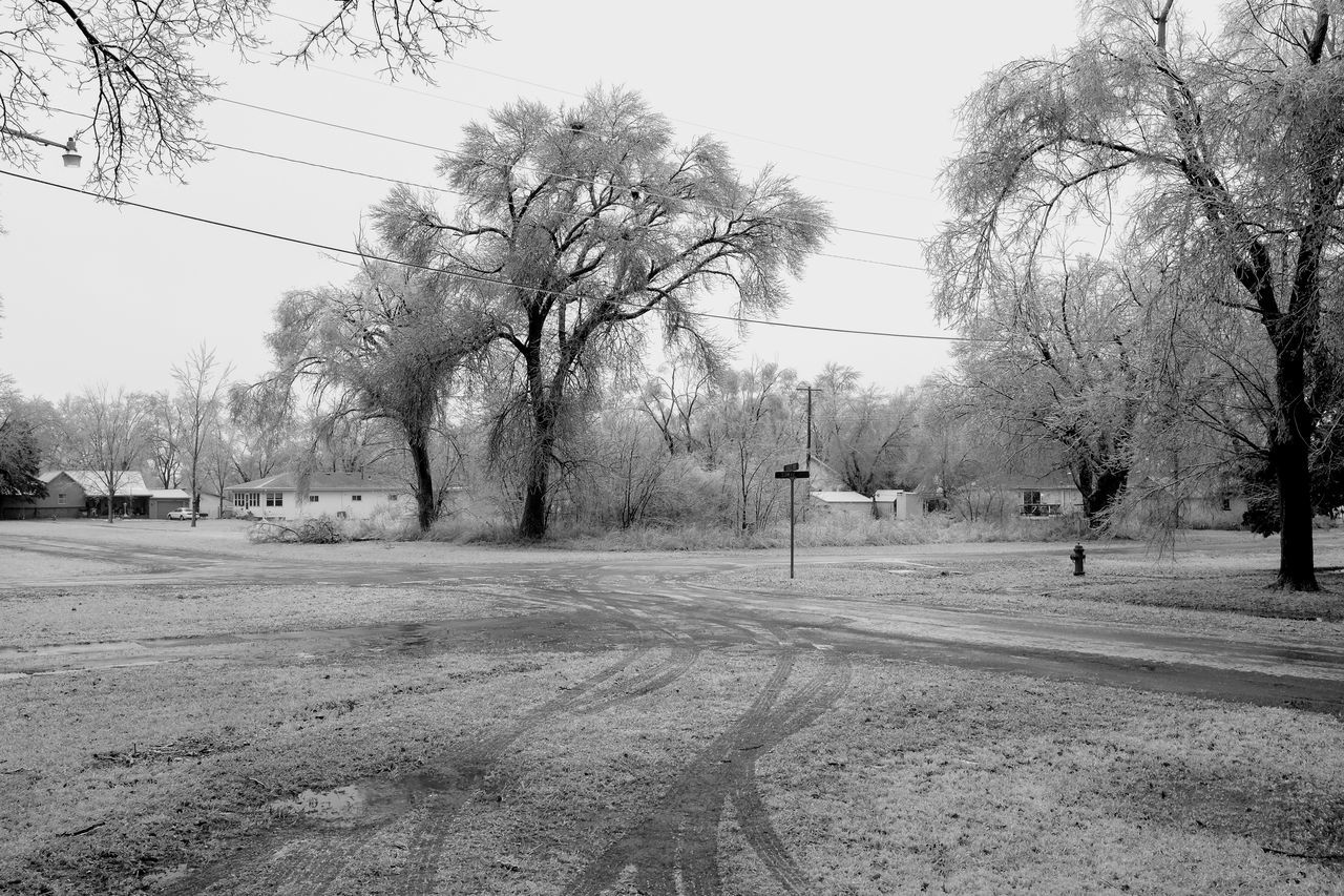 """Visual Journal January 16, 2017 Western, Nebraska - 15 and 16 January 2017 Ice Storm - Over the course of 15 and 16 January 2017, an upper-level storm system tracked from northwest Mexico into the central Plains. A seasonably moist low-level air mass present ahead of the upper-air disturbance surged north through the Great Plains, atop a sub-freezing, near-surface layer of air. The net result was a widespread ice storm which affected locations from the southern High Plains into the mid Missouri River Valley. This winter storm was unusual from the perspective that the predominant precipitation type was freezing rain with little in the way of observed snowfall. Over eastern Nebraska and southwest Iowa, ice accumulations ranged from 0.50-0.75"""" across southeast Nebraska to 0.10-0.20"""" in the Omaha Metro area. Bare Tree Camera Work Day Extreme Weather EyeEm Best Shots EyeEm Masterclass Frozen Ice Storm Ice Storm 2017 Icicles Icy Day MidWest My Neighborhood No People Outdoors Photo Diary Photo Essay Road Rural America Shootermag_usa Small Town Stories Storytelling Visual Journal Winter Wonderland Wintertime"""