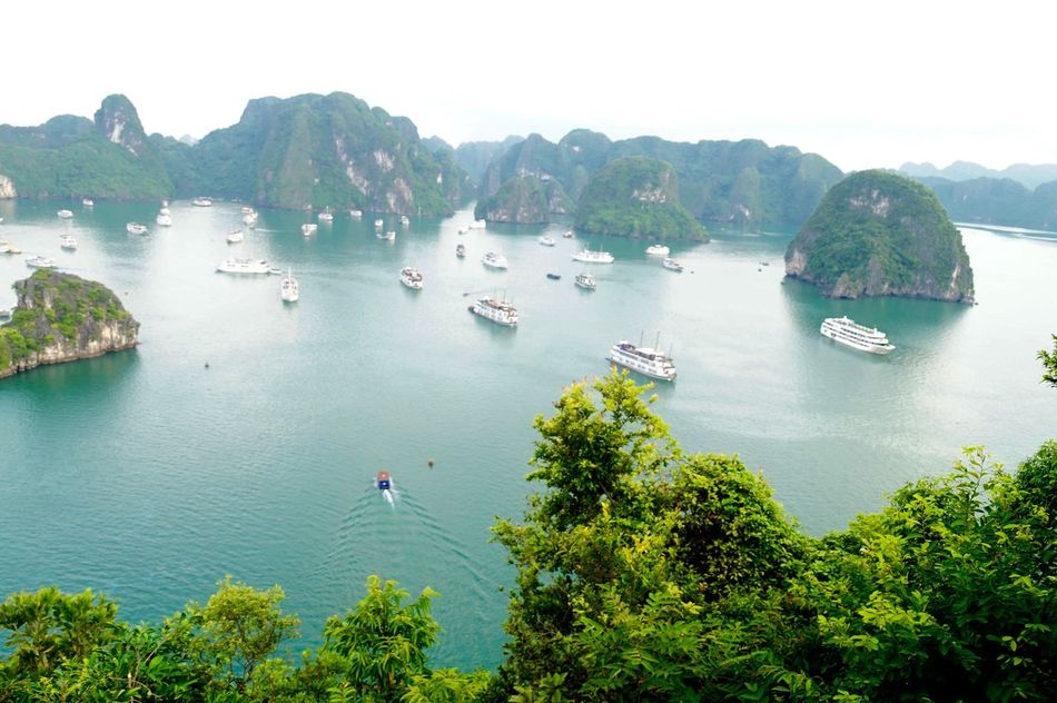 Beauty In Nature Boat Clear Sky Day Ha Long Bay High Angle View Jet Boat Mode Of Transport Moored Mountain Nature Nautical Vessel No People Outdoors Sailing Scenics Sea Sky Tranquil Scene Tranquility Transportation Tree Tree Vietnam Water
