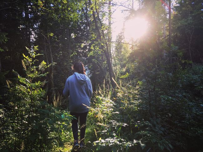 Nature Sunshine Enjoying Life Check This Out Trees Norway Oslo Sister Forest Forestwalk Vacation Holiday Scandinavia Hello World