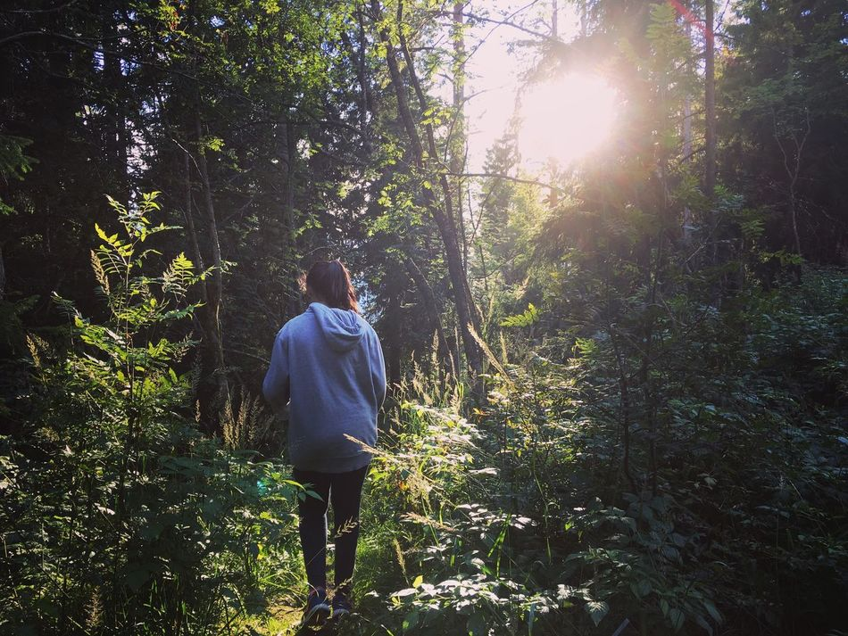 Nature Sunshine Enjoying Life Check This Out Trees Norway Oslo Sister Forest Forestwalk Vacation Holiday Scandinavia Hello World My Year My View Uniqueness