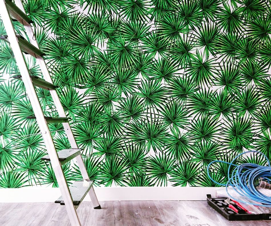 Work in progress Green Color Nature Tree Plant Flowers Design Jungalow Style Tropical Style Wallpaper Houzzoffice Houzz Italia Houzz Life Office Startup Offices Startup