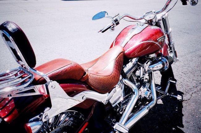 Aligator Seat Motorcycles Klasse W 35mm Film