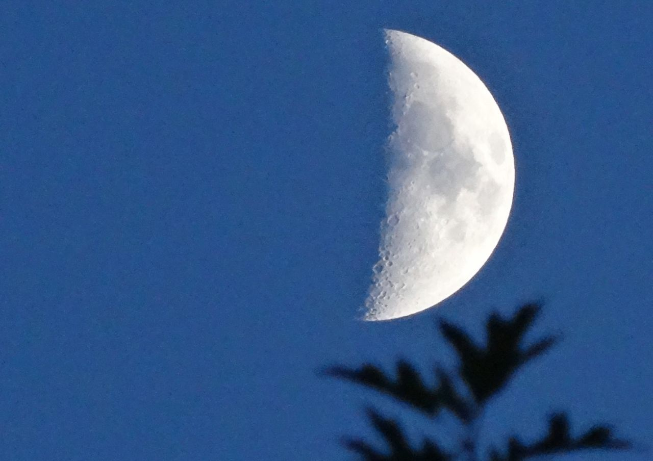 Crescent moon against clear blue sky