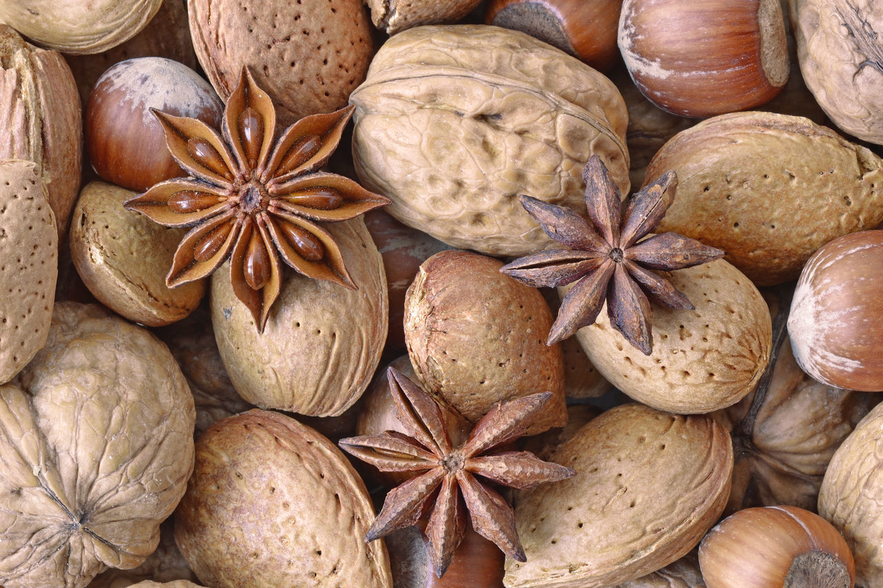 Almond Backgrounds Brown Close-up Dried Food Freshness Fruit Full Frame Hazelnut Healthy Eating Mix Natural No People Nut Nutshell Organic Shell Snack Star Anise Vegan Walnut