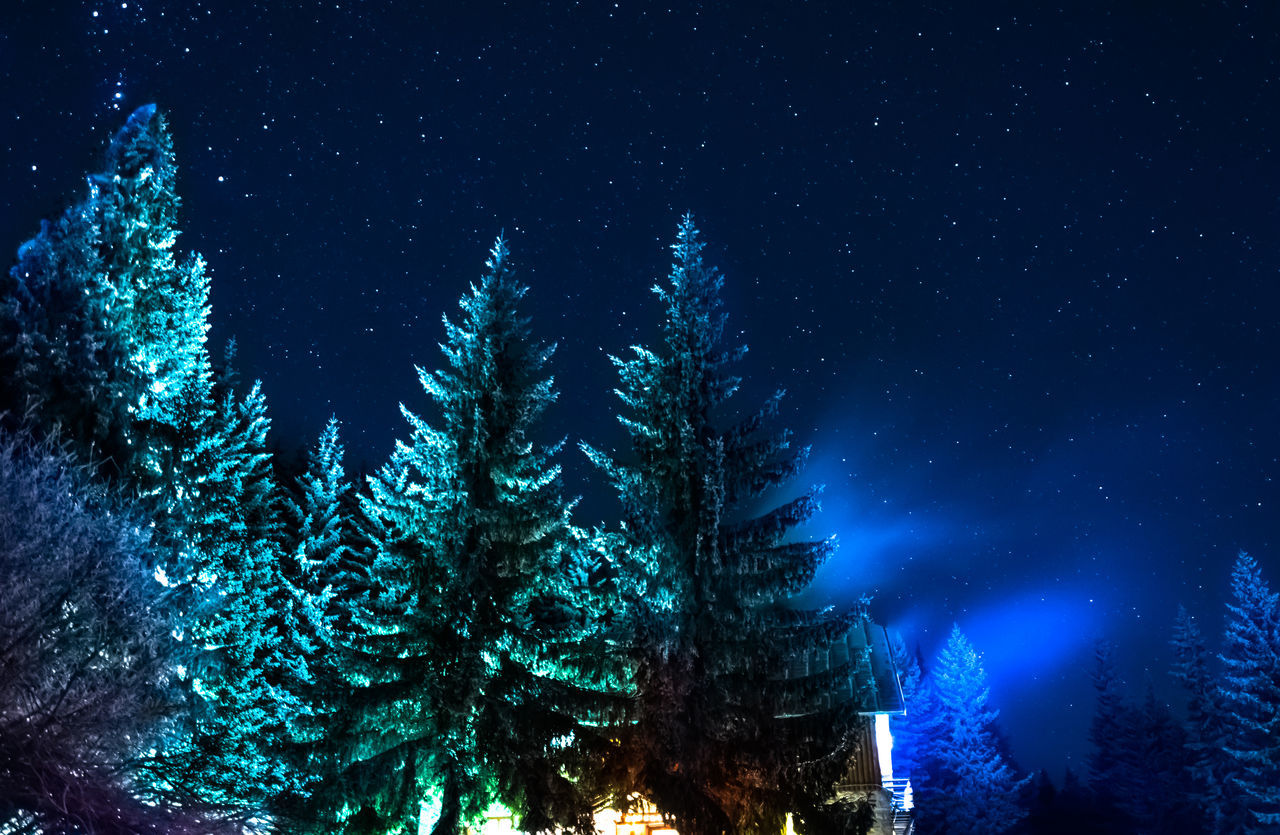 Tree Nature Night Sky No People Shiny Outdoors Cold Winter ❄⛄ Backgrounds Blue Hut Mountain Mountain Hut Stars Vitosha Mountain Sofia, Bulgaria