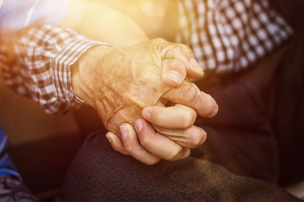 A Helping Hand Care Close-up Cooperation Friendship Generations Grandfather Grandfather And Grandson Holding Home Caregiver Human Hand Lifestyles Nephew  Old People Senior Adult Sunlight Together Togetherness Wrinkled