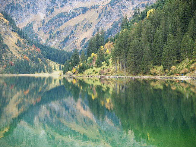 Beauty In Nature Forest Lake Landscape Mountain Nature No People Outdoors Reflection Scenics Tranquil Scene Tree Water Vilsalpsee Austria